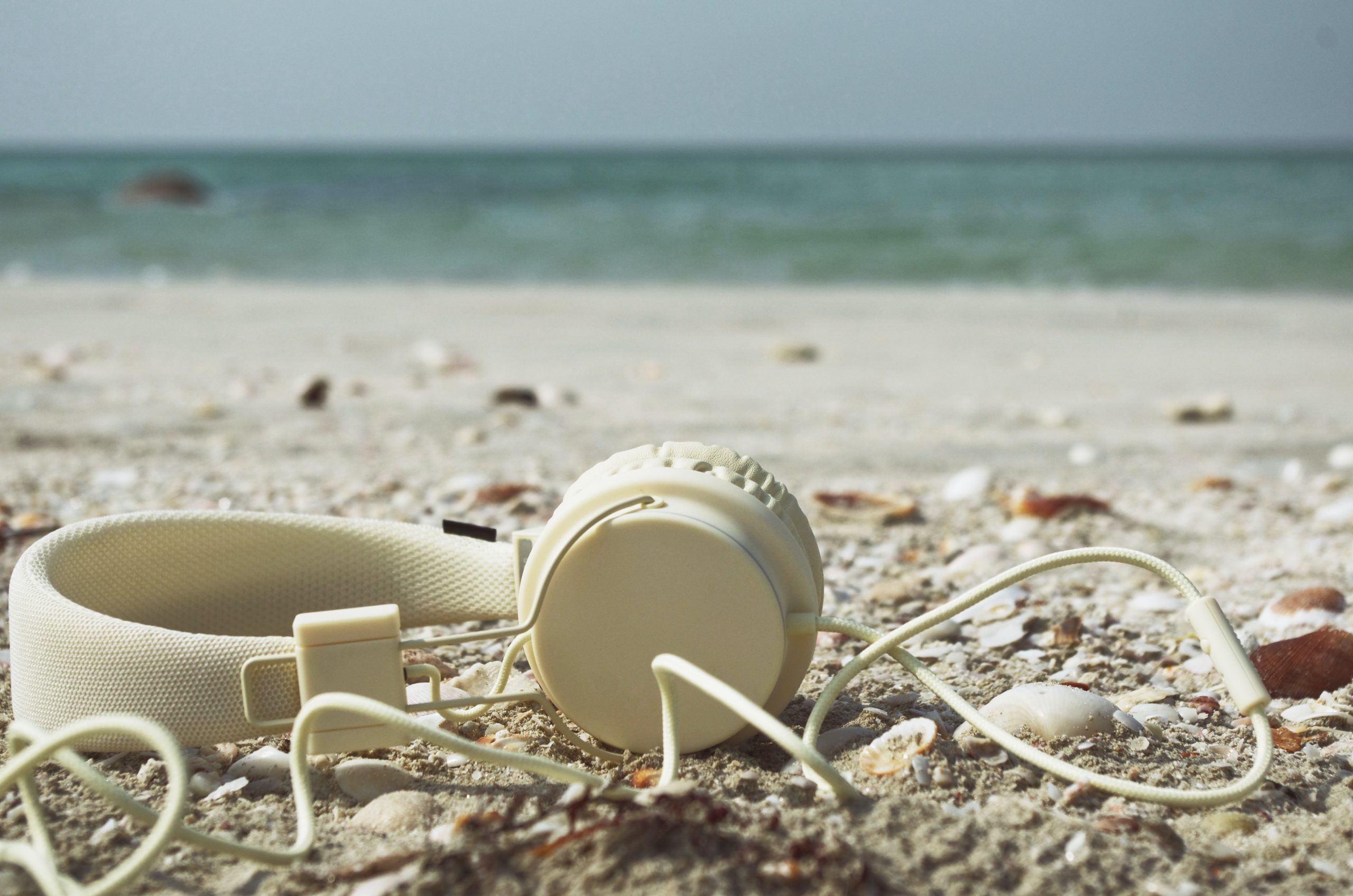 white plastic cup on white sand beach during daytime