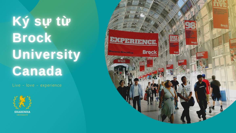 Ký sự từ Brock University – Du học Canada