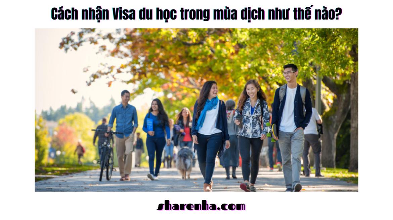 Cách nhận Visa du học trong mùa dịch như thế nào?